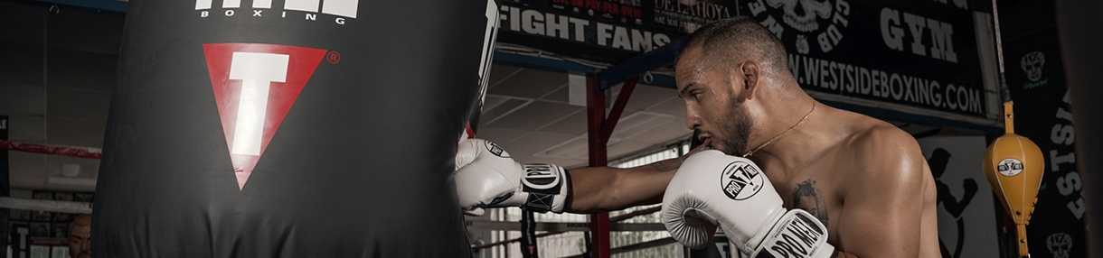 Punching Bags: Best Heavy Bags, Speed Bags & Double End Bags