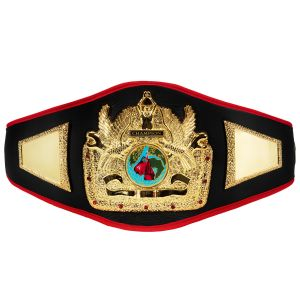 picture about Printable Wrestling Belt Template named Championship Belts Awards: Boxing Belts, Medals, Award