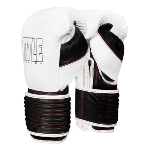 TITLE Boxing Leather Eclipse Training Gloves